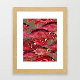 red snapper school of fish Framed Art Print