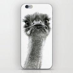 Cute Ostrich SK053 bis iPhone & iPod Skin