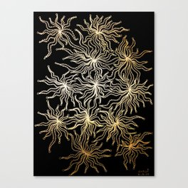 gold anemone Canvas Print