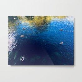 Peaceful Photography Metal Print