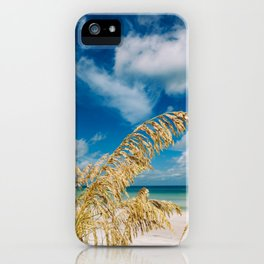 Gulf of Mexico iPhone Case
