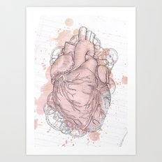 Anatomical Heart Art Print