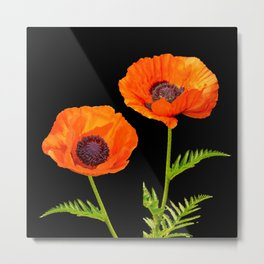 Two beautiful  poppies Metal Print