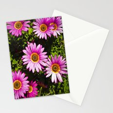 Dressed In Pink Stationery Cards