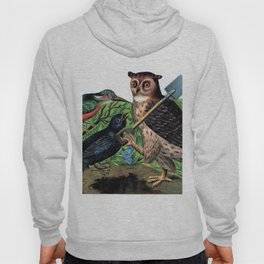 Vintage Owl with Shovel Hoody