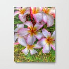 Colors In Bloom 029 Metal Print