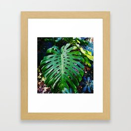 Monstera deep green tropical Framed Art Print