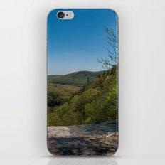 The Poconos iPhone & iPod Skin