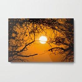 Forest Sunrise Metal Print