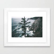 Oregon Coast VII Framed Art Print