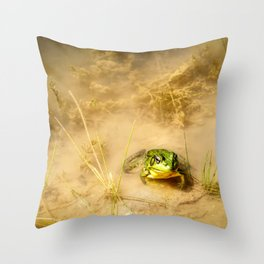 The Pond 2 Throw Pillow