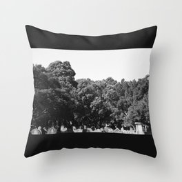 From the earth to the sky Throw Pillow