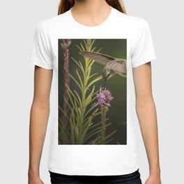 Hummingbird and deck flowers T-shirt
