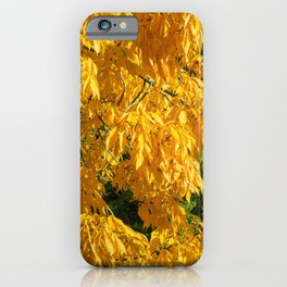 Autumn Yellow 2 iPhone Case