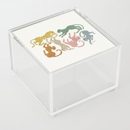 Rainbow Cheetah Acrylic Box