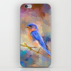 Bring On The Bluebirds iPhone & iPod Skin