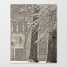 Snow Composition Canvas Print
