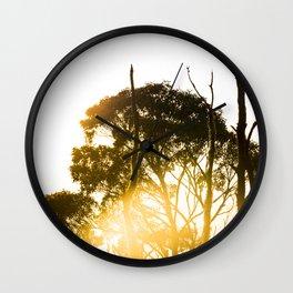 Hobart, Tasmania Wall Clock