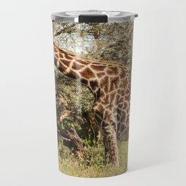 African Giraffe Snacking - Serengeti Tanzania 5068 Travel Mug
