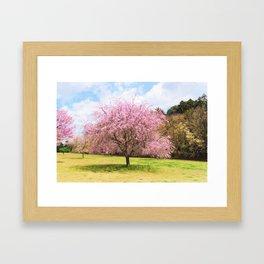 Beautiful cherry blossoms Framed Art Print