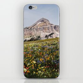 Fossil Mountain Wildflowers iPhone Skin