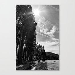 Black and White Fallen Leaf Canvas Print