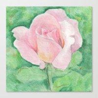 tiffany Canvas Prints featuring Tiffany Rose by Annie Mason