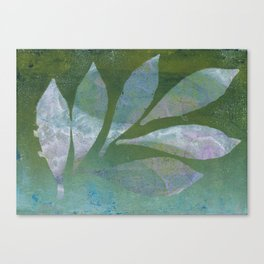 Botanica No. 11 Canvas Print