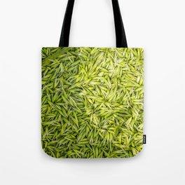 Milkly Oat  Tote Bag