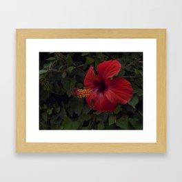 The core of Love Framed Art Print