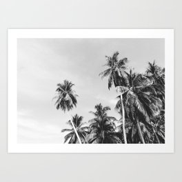 Palms Trees on the San Blas Islands, Panama - Black & White Art Print