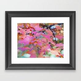 Autumn Rainbow Colors Framed Art Print