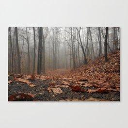 Foggy Trail. Canvas Print