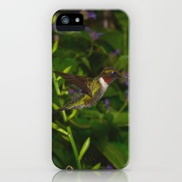 male hummingbird hovering 40 iPhone Case
