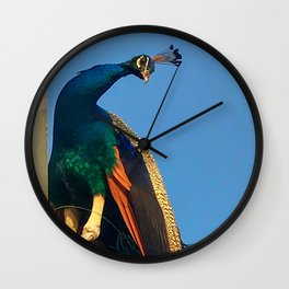 Indian Peacock Wall Clock