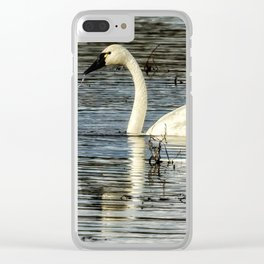 Tundra Swan Clear iPhone Case