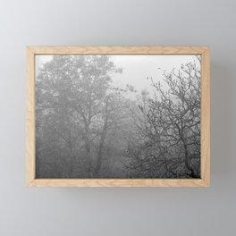 Black and white autumnal naked trees surrounded by fog Framed Mini Art Print
