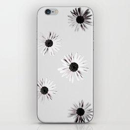 Shadow Box Flowers iPhone Skin