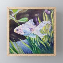 White Goldfish #2 - fish painting Framed Mini Art Print