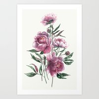 peony Art Prints featuring peony by Dao Linh