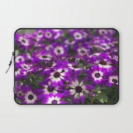 Cineraria Flower Laptop Sleeve