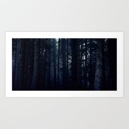 Duskwood Forest Art Print