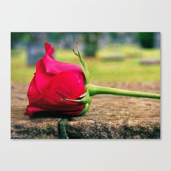 Rose aesthetics Canvas Print