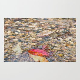 Red Leaf Stuck Among Watery Rocks Rug