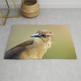 Female Great-tailed Grackle Rug