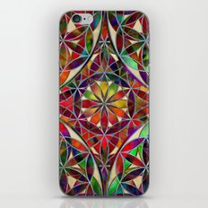 Flower of Life variation iPhone & iPod Skin