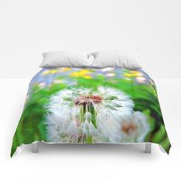 Dandy life. Comforters
