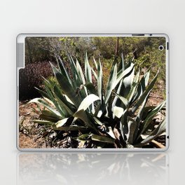 agave 01 Laptop & iPad Skin