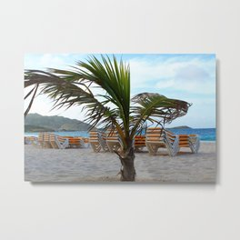 Behind the Palm Metal Print