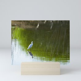 White Egret standing over reflection in green water Mini Art Print